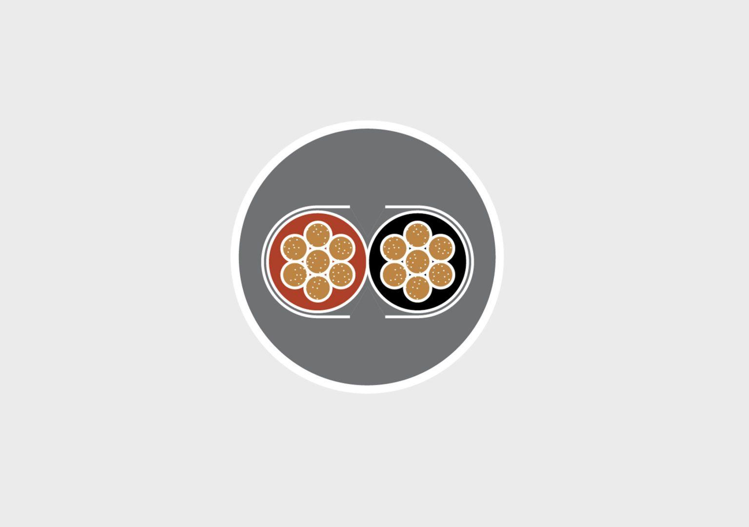cable enceinte haut-parleur triangle