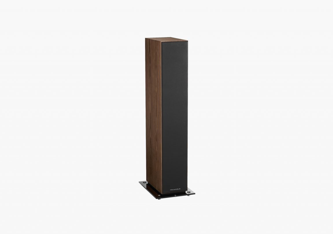 Enceinte hifi colonne triangle esprit ez antal erable brun brown maple packshot 04